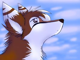 .:Look Up:. by Nayobe