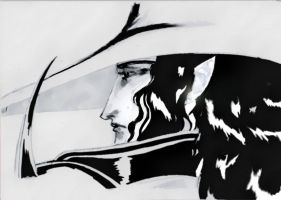 Vampire Hunter D by wasted-rebel
