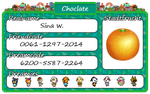 Animal Crossing: New Leaf Towncard by FollowCandyPanda