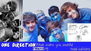 Firmas png de One Direction by maarii03189