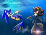 SONADOW: Shadow and the Shaman by SonicRemix