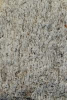 Stone Close-up - D670 by AGF81