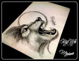 Wolf by rotwolf93