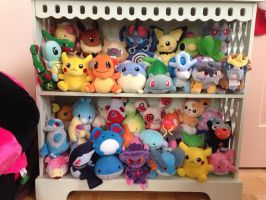 Pokedoll Shelf by Fishlover