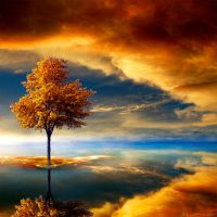 Autumn Dream by JacqChristiaan