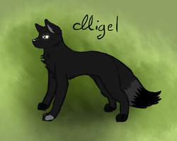 Migel by meokami