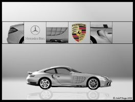 911 Vs. SLR by carlosp