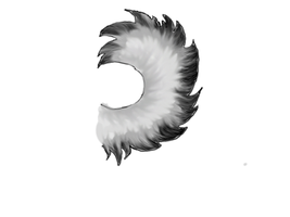 Husky tail study first attempt by JinxCuri