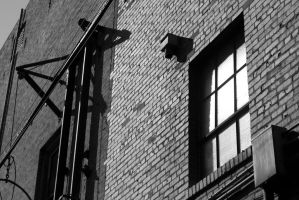 Bricks and a Window by FellowPhotographer