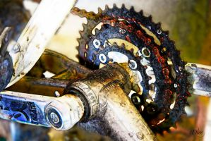 Bicycle's Gears by DleeKirby