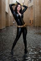 Black Widow in a Fountain by Miracole