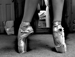 pointe shoes by pinkngraygal