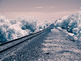 Along a RailRoad Track 4 by Pennes-from-Heaven