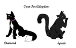 Up for Adoption- Diamond and Spade by Bayflight
