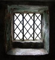 Window5 by NickiStock