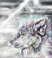 Eye of the storm by ghostwolfen