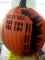 My Tardis Turned Into a Squash by silentlily