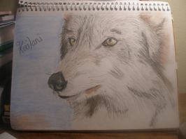 Kailani Oil Pastel by ldybg95