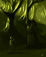 The mysterious forest by MarkTarrisse