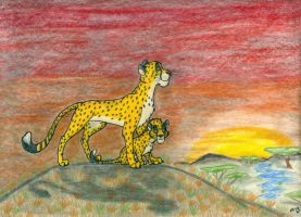 International Cheetah Day Challenge by wahyawolf