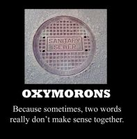 Oxymorons by TheBronzeGryphon