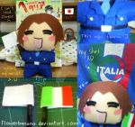 N.Italy Plushie by flowerbanana