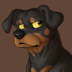 Rottweiler by Cocotato