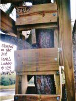 Our Treehouse Built by My Husband {Photo 40} by Empress-XZarrethTKon