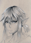 Link - Legend of Zelda for the Wii U by Kipichuu