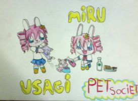 :RQ: pet society by Kagami-Usagi