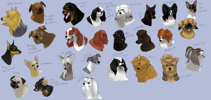 dog icons - TOY GROUP by swift-whippet