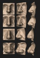 Anatomy Practice - Male Nose by HazardousArts