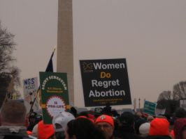 DC Pro-Life Sign 1 by MetalShadowOverlord
