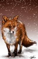 Fox in the Snow by TsukiPan
