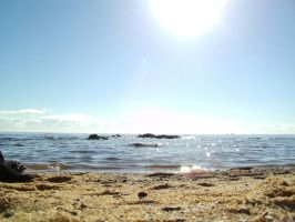 Beach - Low View 002 - HB593200 by hb593200