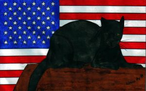 Patriotic Panther by Raiderhater1013