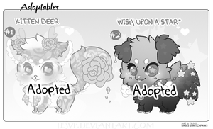 *SPECIAL* Adopt OFFER - {CLOSED} by Tesvp