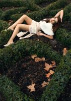 Shrubbery by fae-photography