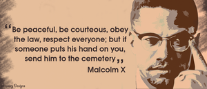 Malcolm X by elmassry