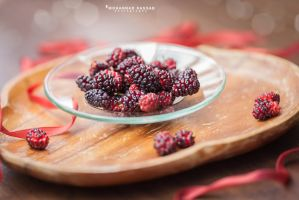 Mulberry by MohannadQassab