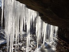 Behind the Icicles by bird150