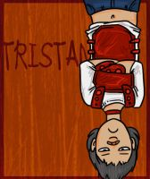 DR - CTF Red Team -Tristan by wingedness