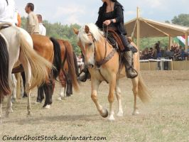 Hungarian Festival Stock 064 by CinderGhostStock