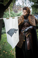 MondoCon 2014 Fall 3 - Rob Stark by cleanpig