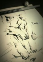Wolf fast sketch by Youlien