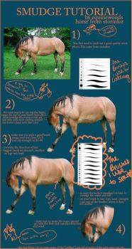 Smudge Tutorial by equinewoods