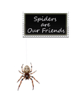Spiders Are Our Friends by Loulou13
