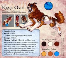 Shisa Character - Oxus by soulofwinter