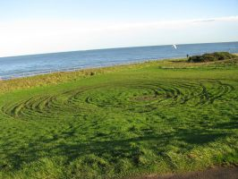 Places 712 circles in grass by Dreamcatcher-stock