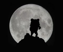 Moon with Pedobear by Frezzypoe